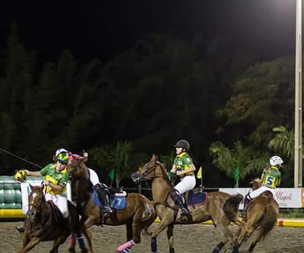 HORSEBALL 3