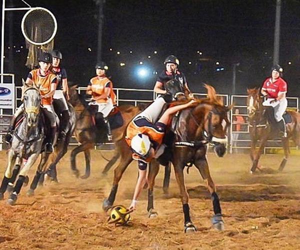 HORSEBALL 8
